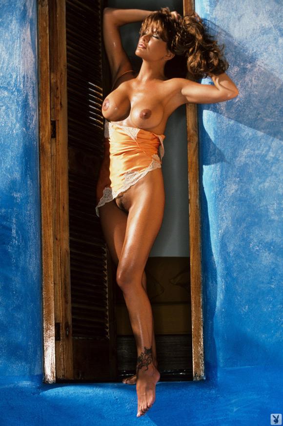 brandi-brandt-playboy-playmate-girl-naked