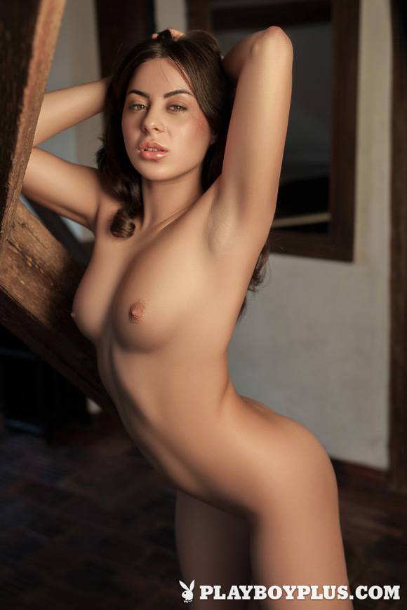 nikki-leigh-playboy-playmate-girl-naked